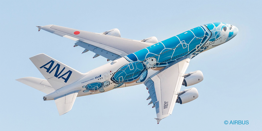 ANA aircraft with Flying Honu livery